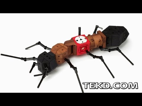 TinkerBots Teach Robotics with Easy Building Block Design