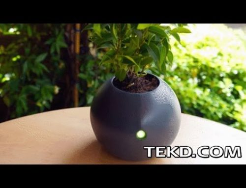 Intelligent Houseplant Care with the Biom Smart Flowerpot